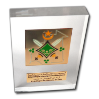 Acrylic Trophies - Bronze Medal on a Rectangular Trophy with an Engraved Plate