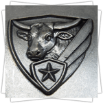 Customized Medals - Relief - 3D Shield