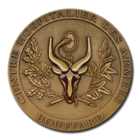 Customized Medals - Colours - Coloured Details on a Bronze Finished Medal