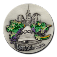 Customized Medals - Colours - Coloured Details on a Silver Plated Medal
