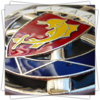 Customized Medals - Colours - Car Plate with Real Hard Enamel Colours - Zoom